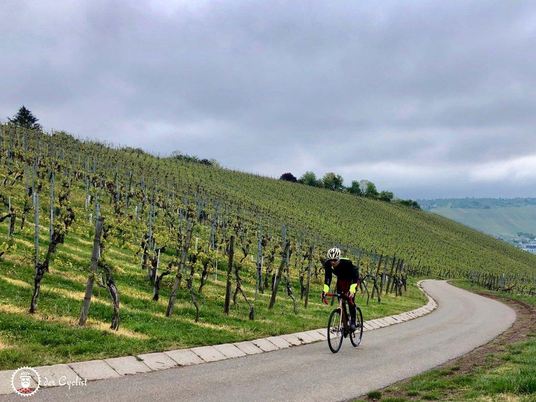 Rennrad - Deutschland - Baden Württemberg - Stuttgart - Fildern - Esslingen - Weinsteige
